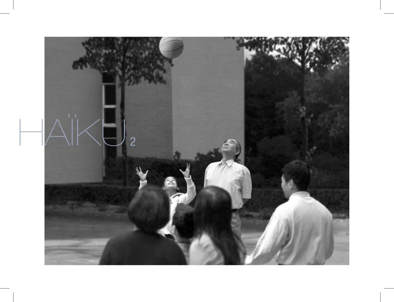 carton-haiku2-v1