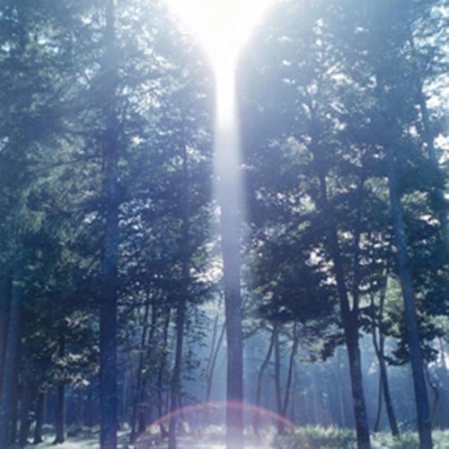 kawauchi-illuminances-haiku-1